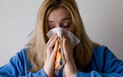 Pollenallergia és szénanátha kezelése a makrobiotika segítségével (2. rész)