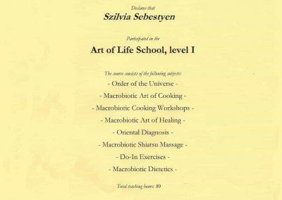 Art of life school, level I