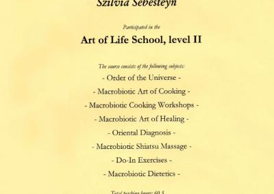 Art of life school, level II