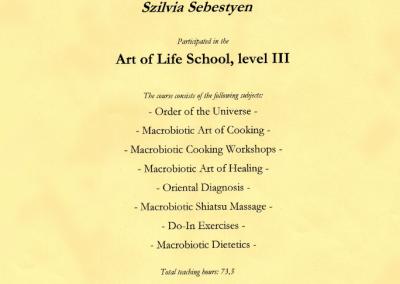 Art of life school, level III