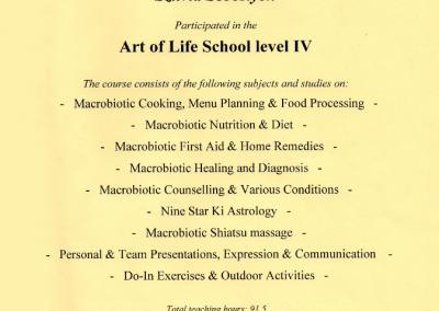 Art of life school, level IV