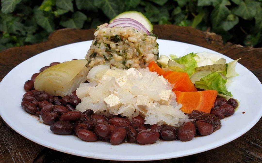 Fekete bab, nishime zöldségek, hófehér tofu és jégcsapretek, petrezselymes barnarizs, jégsaláta kovászos uborkával